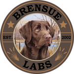 Brensue Labs - Mike Knutson 320-304-1510